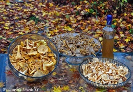 Chanty-threesome-and-vodka-2013-DW-MS