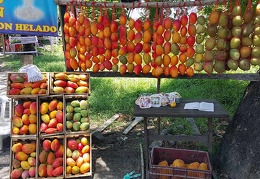 Fruits in Gualanday