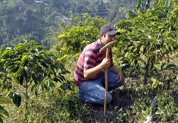 Coffee farmer with plants Ms