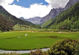 What a place! Hiking up a narrow valley to find this jewel. Wetland meadows with Mt Chana Dorje in the back