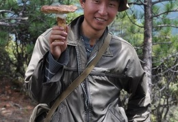 Orgyen Rinchen with one of many matsutake he picked that morning.