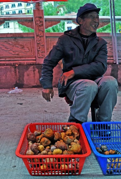 Old Mushroom dealer w Gypsies Leccinum S.jpg