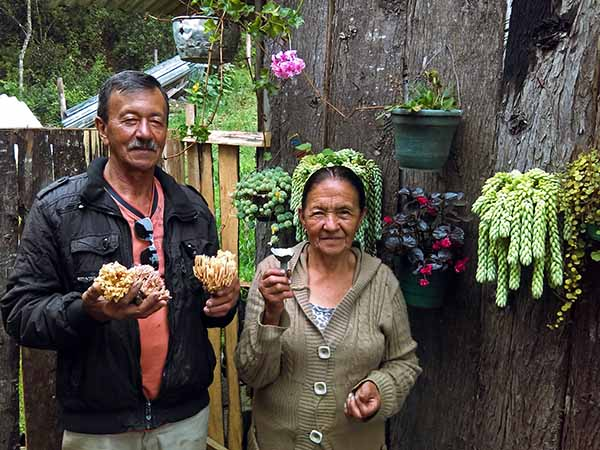 Farmer from Pauna Boyaca with edible mushrooms ed S.jpg
