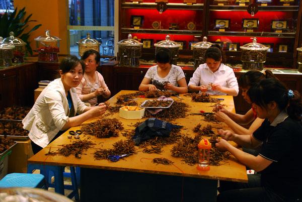 Cordyceps processing Chengdu